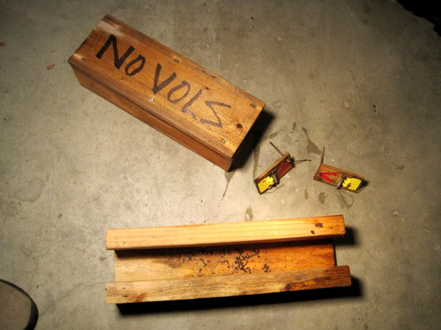 how to make a homemade mouse trap that kills